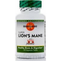 SUPER MELENA DE LEON 120 TAB.1000MG - LIONS MANE