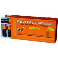 REVITAL JALEA REAL 1000 MG VITAMINADO