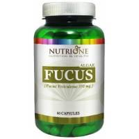 FUCUS 350 MG 60 CAPSULAS NUTRIONE