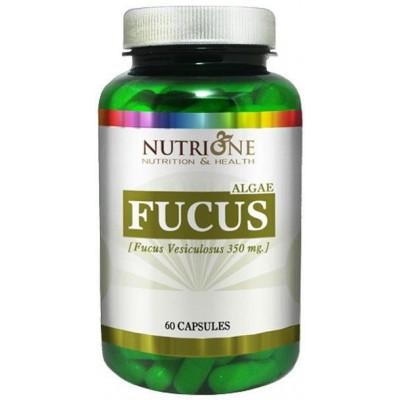 comprar NUTRIONE FUCUS 350 MG 60 CAPSULAS NUTRIONE