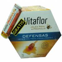 comprar Vitaflor VITAFLOR DEFENSAS JALEA REAL 1000 ML. 20